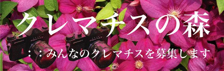 34banner-2tsu-3tsu.jpg